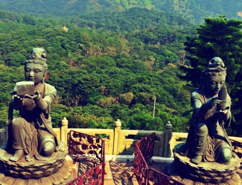 48hrs in Hong Kong: The Rowdy Fountain of Youth