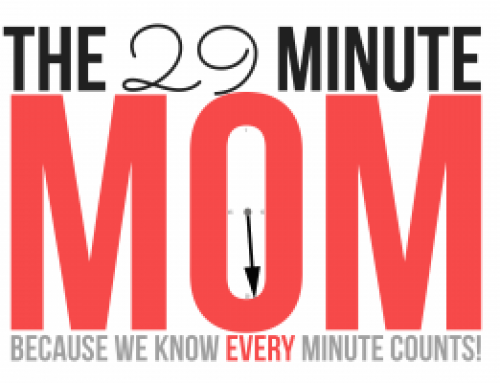The WWW's on The 29 Minute Mom Podcast