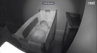 baby sleep trainer method nest cam